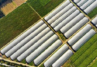 中国移动5G商用,农业物联网进入发展快车道