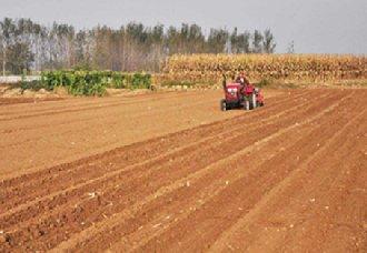 广西柳州进行2019年耕地地力保护补贴项目实施情况调研