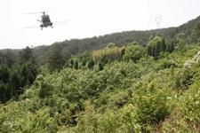 北京林业防治:有害生物成灾率平均控制在0.03‰