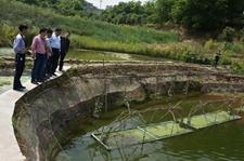 甘肃天水:加强畜禽疫情防控 全市畜牧经济发展势头良好