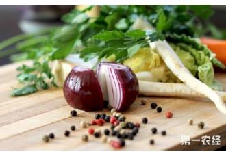 高品质富硒有机洋葱品种选育成功