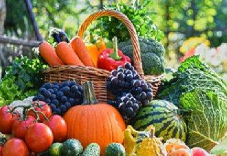 山东开展蔬菜水果质量安全监管抽查工作