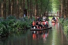 森林旅游已逐渐成为我国林业第三个支柱产业