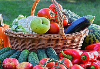 山东进行下半年蔬菜水果质量监督抽查工作安排