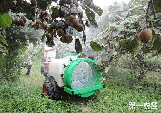 如何保证农药药效?果园施药注意事项