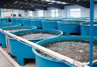 海南为更好保护生态环境 发布《水产养殖尾水排放要求》