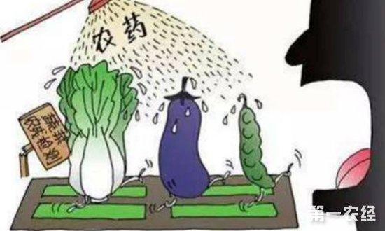 什么是农药残留?目前我国农产品农药残留的状况如何?