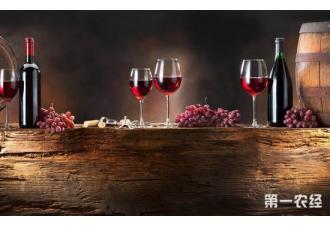 <b>这些葡萄酒真假鉴别方法靠谱吗?</b>
