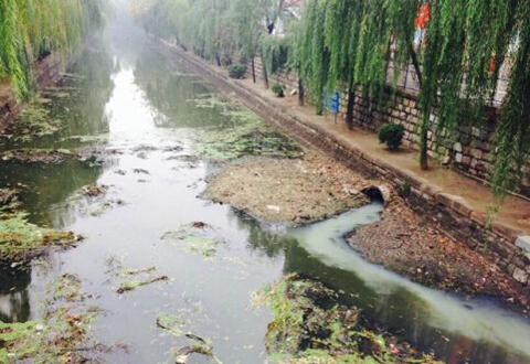 多部门联合推进农村生活污水治理举措意见