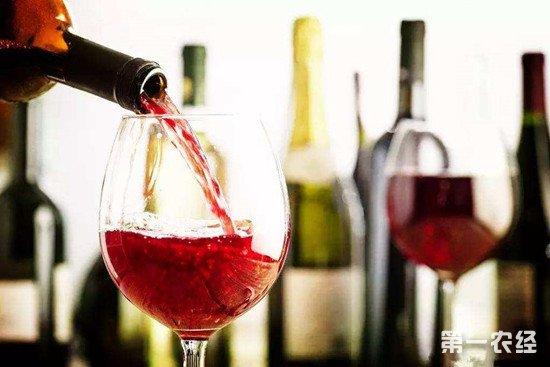 为什么葡萄酒的度数都比较低?