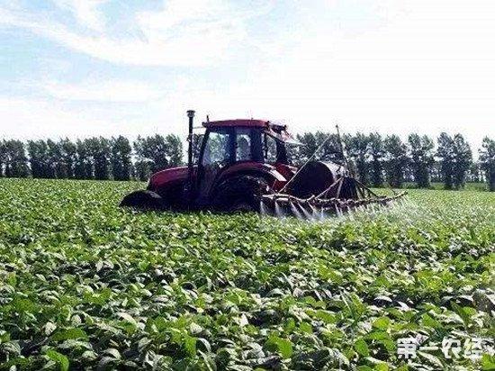 叶面肥和水溶肥有什么区别?叶面肥的优势介绍