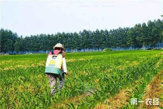 农业中常用的除草剂及使用注意事项