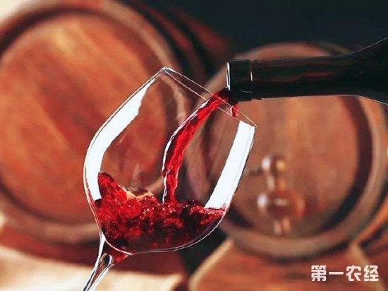 喝葡萄酒的一些小技巧:如何提高品酒体验?