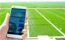 福州农业园接入5G网络 为农场管理提供方便