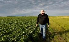 贸易争端致美国农民叫苦不迭 农产品贸易也大受影响