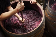 红酒酿造一定要加糖吗?如果不加糖会怎样?