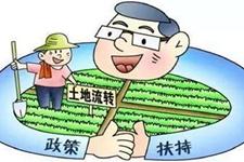 农村土地改革:承包的土地能不能继承?承包土地时需要注意什么?