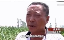 """瓜农""""拽倒""""偷瓜贼 """"拉偏架""""倒赔300元?"""