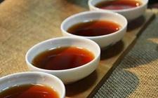长期过度饮茶,爱喝浓茶者易缺铁性贫血哦