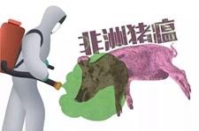 山东省加强非洲猪瘟防控工作 11项举措全链条监管