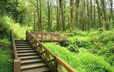 第3批国家森林步道名单出炉了!快来看看!