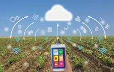 "<b>线上智慧农业系统:农民种地用上了""云""科技</b>"