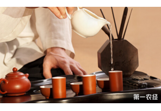 茶之道分解泡茶的基本步骤 你学会了吗?