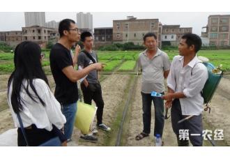 提升农资产品质量安全 推进农资监管平台的建设