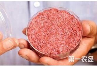 过后人造肉会出来在我们的餐桌上吗