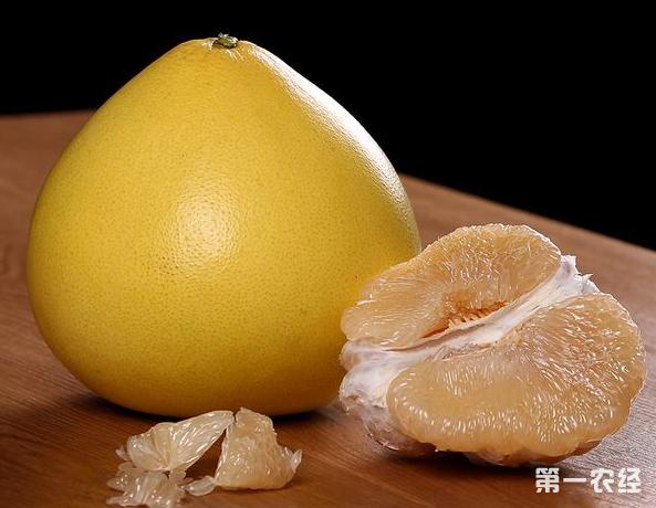 喜欢吃柚子的朋友注意了 柚子和它千万别一起吃