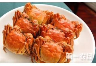 吃螃蟹也有毒?哪些螃蟹不能吃