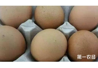 鸡蛋的价格在国庆后是否会回落