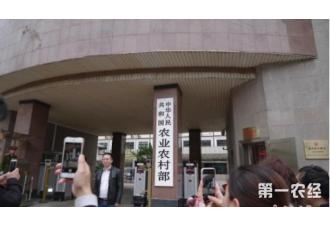 中国农业农村部指出生猪屠宰问题企业坚决关停