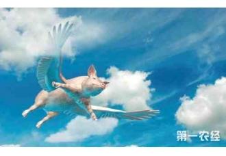 北京国际风能大会暨展览会开幕