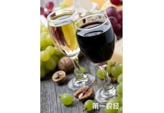 酿葡萄酒的要点 这一些要掌握