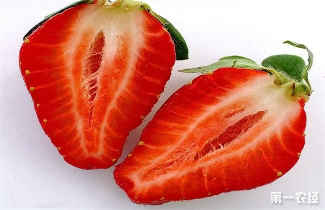 草莓出现空心要怎么去预防