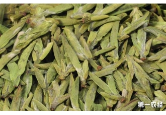 <b>龙井茶的来历和传说</b>