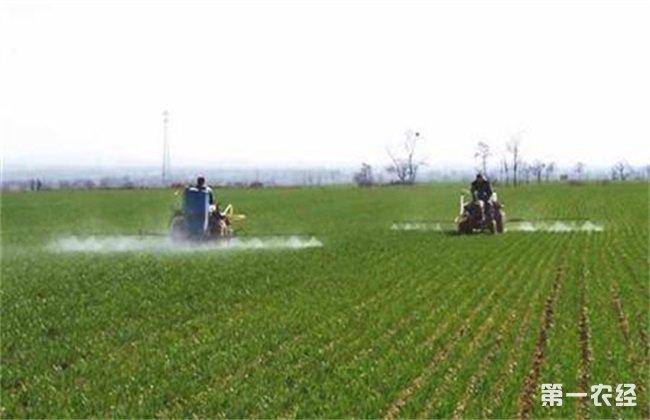 植物生长调节剂 使用后管理