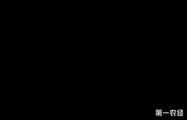 秋葵 施肥时间 方法