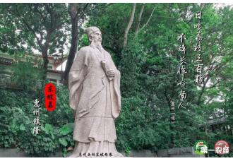 """""""东坡荔""""的前世今生"""