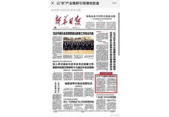 """当地人都说""""陈皮村""""是打开江门市财富大门的敲门砖"""
