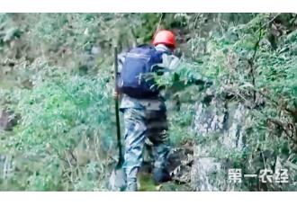 国家林草局:明确乡村护林(草)员职责与权利