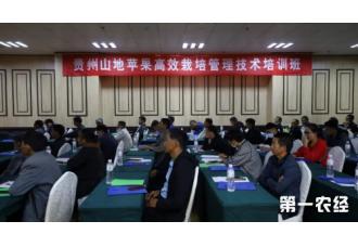 贵州山地苹果高效栽培管理技术培训班在威宁开班